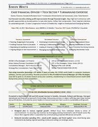Cfo Resumes Free Template Cfo Resume Templates Resume Sample Best
