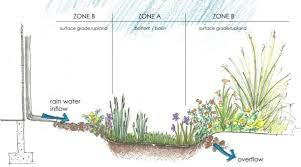 Small Picture Creating Rain Gardens Design Guidelines City of Pacific Grove