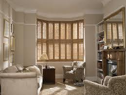 Wood Window Treatments Ideas Living Room Window Blinds Design