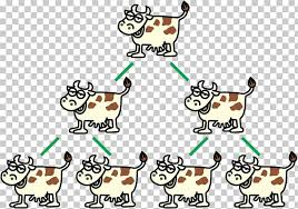 Cattle Chart Cattle U82f1u97dcu6f2bu756b Cow Relationship Chart Png