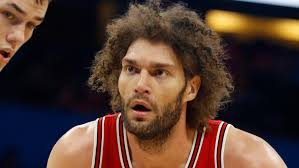 Robin lopez is gay