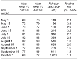 Feeding Catfish In Commercial Ponds