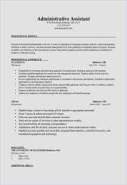 Resume Examples Reddit Thomasdegaspericom
