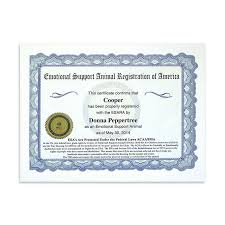 How To Get A Doctors Note For An Emotional Support Dog Professional Esa Certification Kit Esa