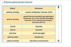 Biology Lower Secondary Ydp Chart Endocrine Glands