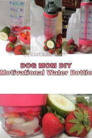 Diy Water Bottle Dog Mom Diy Motivational Water Bottle Pawbellish