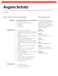 Resume For No Work Experience High School Resume Template For No Work Experience Hotwiresite Com