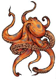 Small Picture Octopus tattoo designs Page 5 Tattooimagesbiz