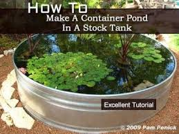 container water gardens container pond