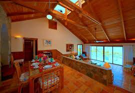 sloped ceiling lighting ideas track lighting. Track Lighting On Vaulted Ceiling. Endearing Living Room Designs Ceiling Ideas For Best Home Sloped