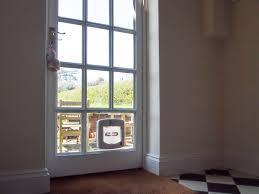 cat flap fitted in a georgian single glazed door