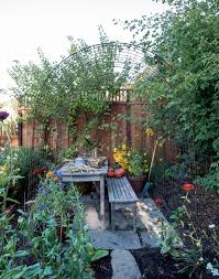 beans grow seasonally in an iron backyard garden in mill valley california in winter