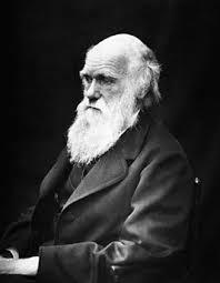 Дарвин Чарлз Википедия charles darwin 01 jpg