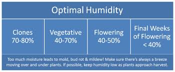 House Humidity Level Chart Controlling Humidity Indoors