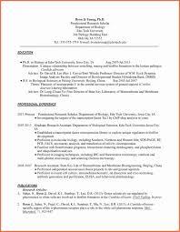Resume Bio Example Resume Bio Example Elegant Resume Bio Examples Examples Of Resumes 15