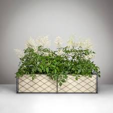 window box range