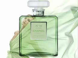 chanel 19 poudre. chanel no 19 poudre : perfume review t