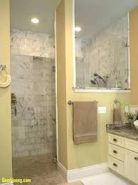walk in shower small bathroom bathroom walk in shower ideas tiny bathroom ideas elegant walk in
