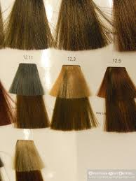 Loreal Majirel Mocha Hair Color Chart Www