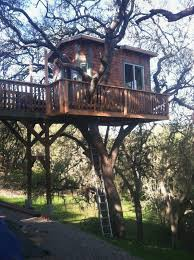 free treehouse plans for s unique 30 diy tree house plans design ideas for