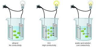 Light Bulb Conductivity Apparatus 11 2 Electrolytes Chemistry