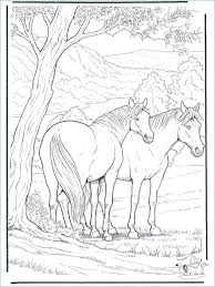 Wild Horse Coloring Pages Fighting Wild Horse Animal Coloring Page