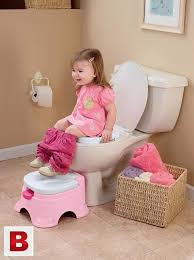 pictures of fisher pink princess stepstool potty chair