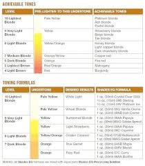 List Of Redken Shades Eq Color Chart Highlights Images And