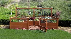 raised vegetable garden beds layout