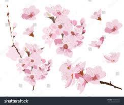 Tips For Japanese Garden Design  CSMonitorcomElement In Japanese