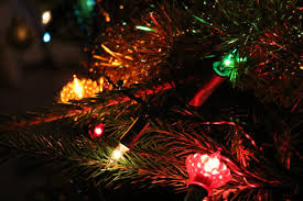 Napa Christmas Tree Lighting Napa Events Napa Valley Events Calendar Local Events In