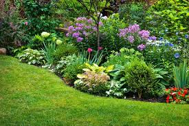 Small Picture Best Of Perennial Garden Design Tips For Growing Perennial Flower