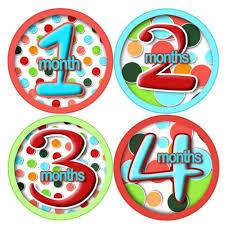 12 month lollidots 1 to 12 month onesie stickers baby showers gifts