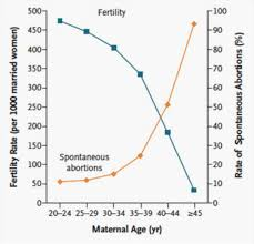 Whats The Best Age To Have A Baby 20s 30s 40s