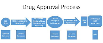 Clinical Trial Process Flow Chart Ppt The Filipino Investor Fdas Drug Approval Process Flow Chart