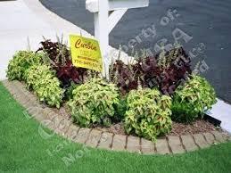 landscaping around mailbox post. Garden Around Mailbox Cute Landscaping Ideas Post