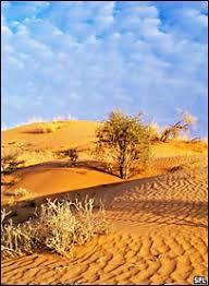 Пустыни Африки Сахара Намиб Калахари Саванны и Пустыни в