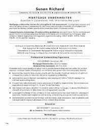 22 Entertaining Resume Template Docx - Sierra