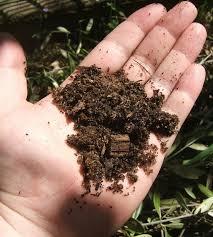 blueberry soil mix. Modren Mix Free Draining Premium Quaulity Camelia Azalea Potting Mix For Blueberry Soil Mix D