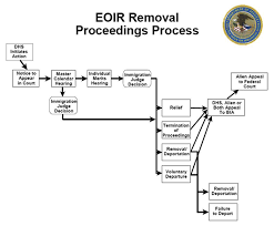 Flowcharts Immigration Law Concerning Removal Proceedings