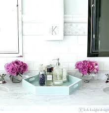 Bathroom Vanity Tray Decor Bathroom Vanity Counter Decor spurinteractive 40