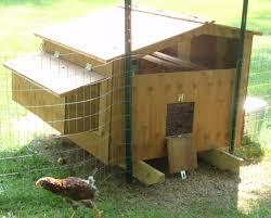 A view of the chicken door