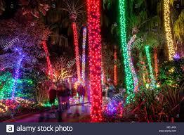 Botanical Gardens Nights Of Lights St Saint Petersburg Florida Largo Florida Botanical Gardens