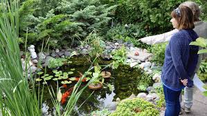 photo essay touring great gardens duluth news tribune molly haugen left and deb hays examine a pond containing koi at one of the gardens on sunday s tour steve kuchera skuchera duluthnews com1 5