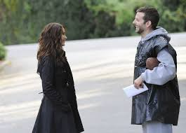 Silver Linings Playbook / www.sarasfavoritethings.wordpress.com