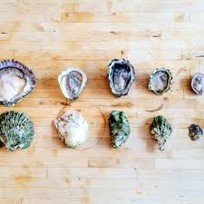 Oyster Identification Chart Half Shell 101 A Beginners Oyster Appreciation Guide In