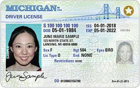 Will To 2020 Fly You In License A Driver's Michigan Need New