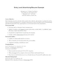 Professional Profile In Resumes Resume Career Profile Examples Professional Profile Resume Examples
