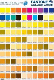 Pantone Color Book Download Pdf Colour 2019 Tpx Free For