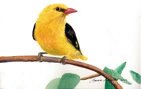 yellow painting little yellow bird by laura tasheiko
